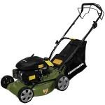 Care sunt cele mai bune masini de tuns iarba sau gazonul? E bine sa cumperi modele ieftine?