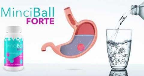 Minci Ball Forte forum