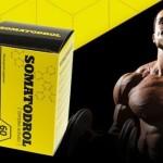 Somatodrol – pentru culturistii care vor mai multa masa musculara